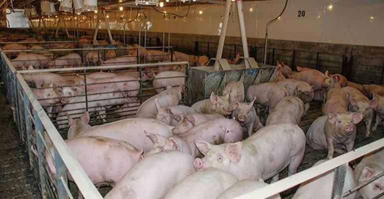 Steiner: 5 drivers to U.S. pork market
