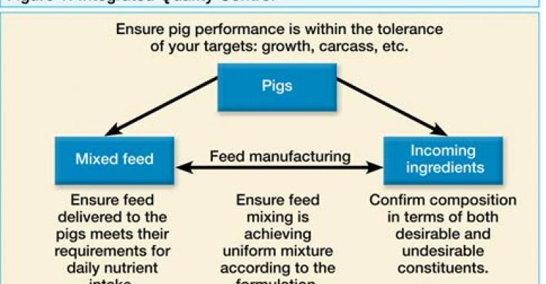 Feed Ingredient Options Add Complexity to Swine Diets