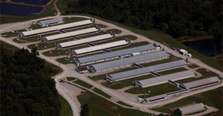 Cargill Opens Sow Innovation Center Located in Kentucky