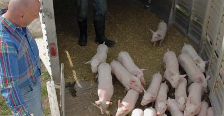 High-Health Status the Goal of 30 pigs/sow/year