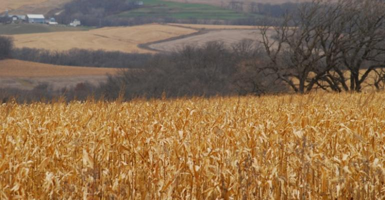 Challenging Weather Conditions Limit Crop Production During 2011