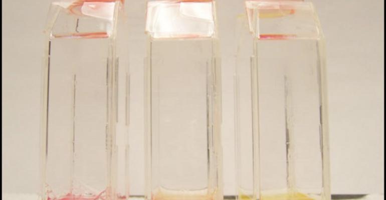 Catching a Fastidious Bug: Mycoplasma pneumonia