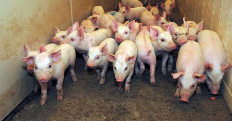 Swine 2012 Study Updates National Health Data