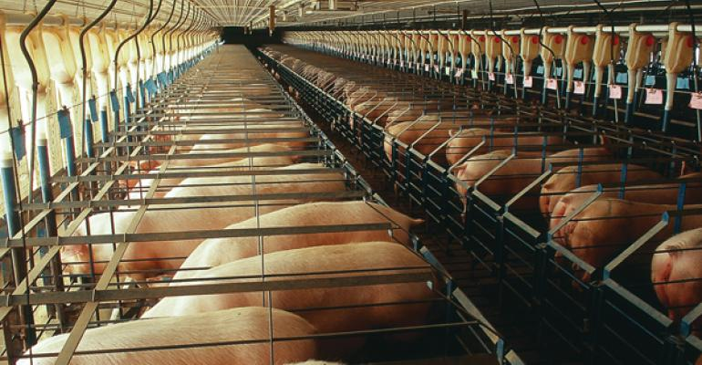 Curtainsided sow barns present risks when it comes to air filtration and biosecurity measures need to be stringently adhered to in order to reduce the risk of PRRS introduction
