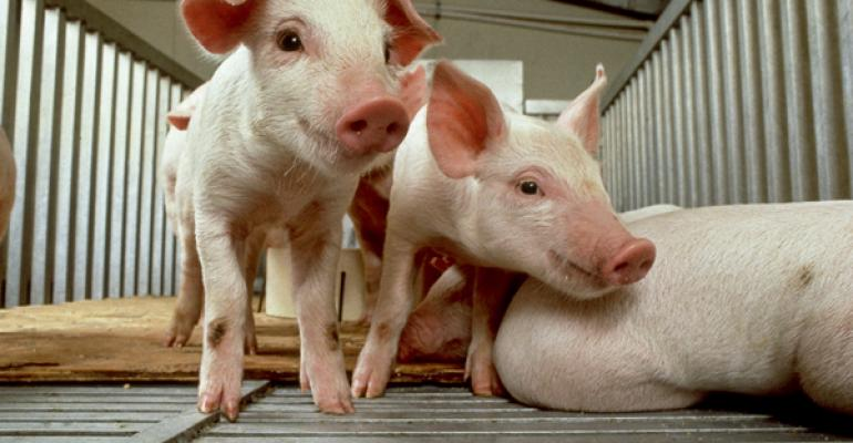 Whey Co-Products a Viable Ingredient in Weanling Pig Diets