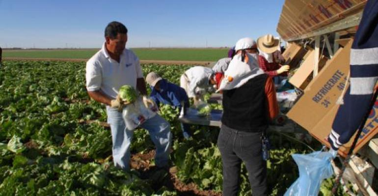 Ruling Renews Agriculture's Call for Reliable Labor Law