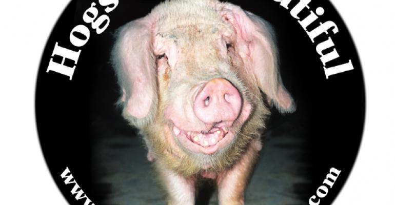 National Hog Farmer Sponsors 'Hogs are Beautiful' Photo Contest