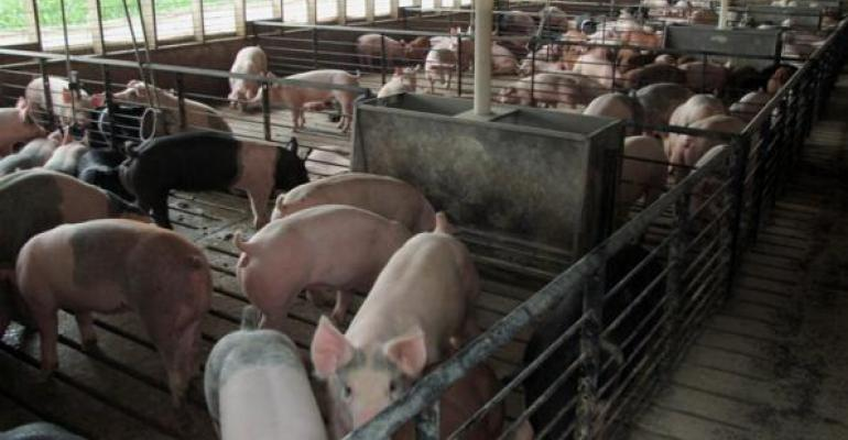 Trade Barriers Threaten Pork's Future