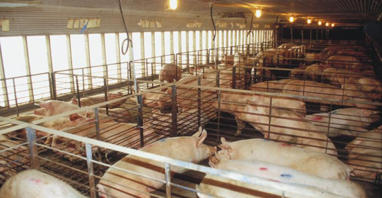 A University of Minnesota study used records from 815 sows while investigating the consequences that may be related to retrofitting a gestation barn from stalls to pens without changing sow inventory