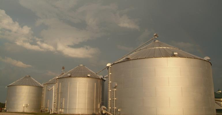 Producers who are storing grain this fall should quickly dry it down to a proper moisture content and watch for contamination Purdue University specialists say