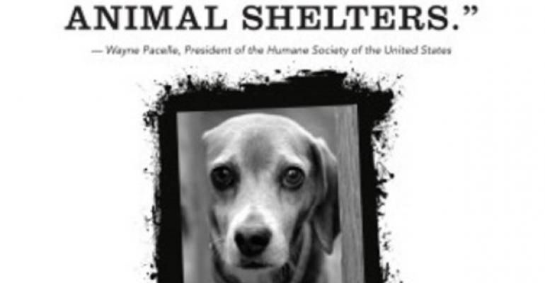 Humane Watch Calls Out HSUS Fundraising Tactics