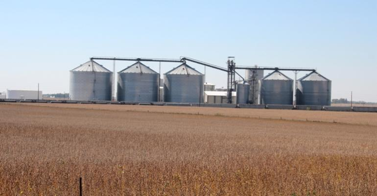 Study Says RFS Waiver Won't Impact Feed Prices