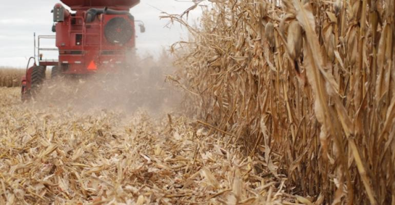 The World Agricultural Supply and Demand Estimate Report was released today