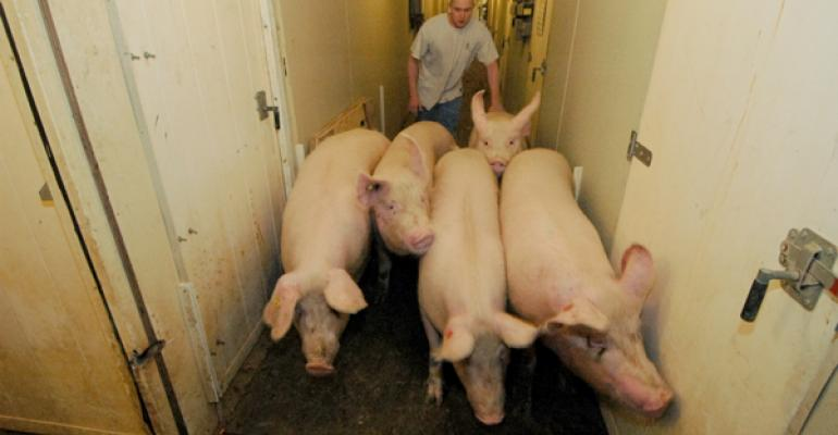 Moving sows
