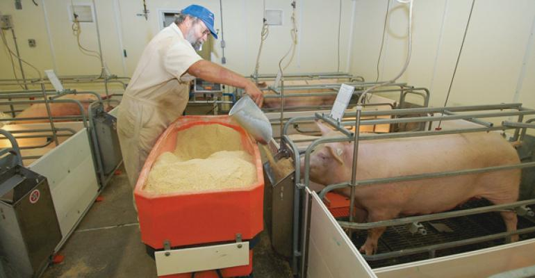 Do deviations from predicted feed intake impact sow performance