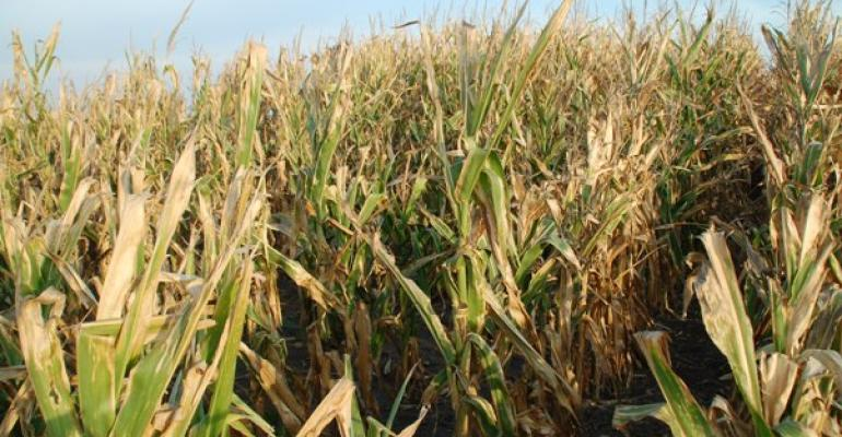Farmers may be able to defer droughtrelated income for tax purposes