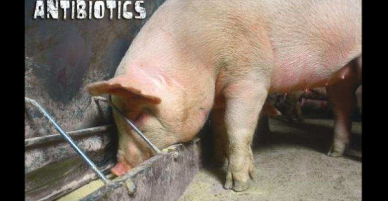 Multi-Drug Salmonella Resistance Isn't Linked to On-Farm Use