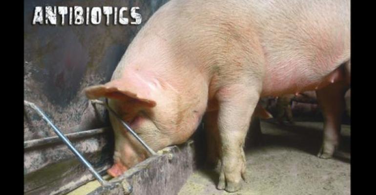 Bill Fails to Advance Judicious Use of Antibiotics