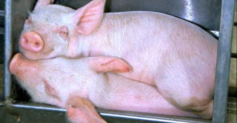 Pork Producers Support National Ag Day March 19
