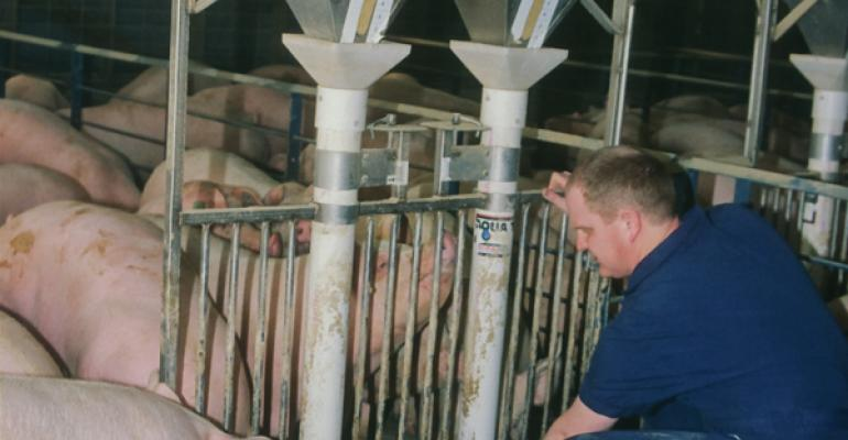 It is especially important to check feeder adjustments in the summer to ensure feed access isnrsquot limiting feed intake