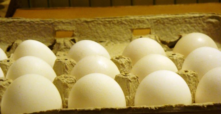 Egg bill could be included in Farm Bill