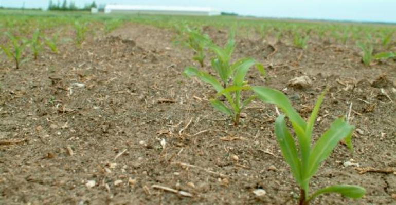 USDA says precipitation slowed planting progress