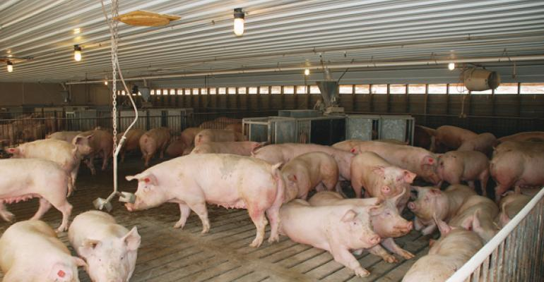 Canadian retailers wish to move to alternative sow housing