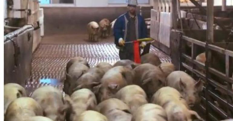 Animal Welfare Institute Petitions USDA