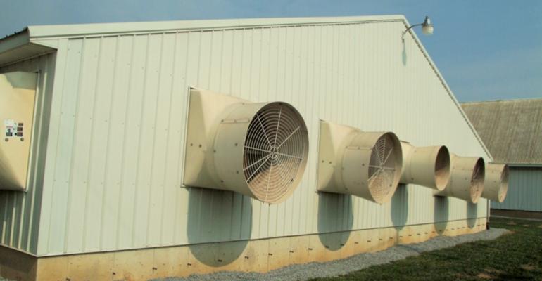 Fans on hog building
