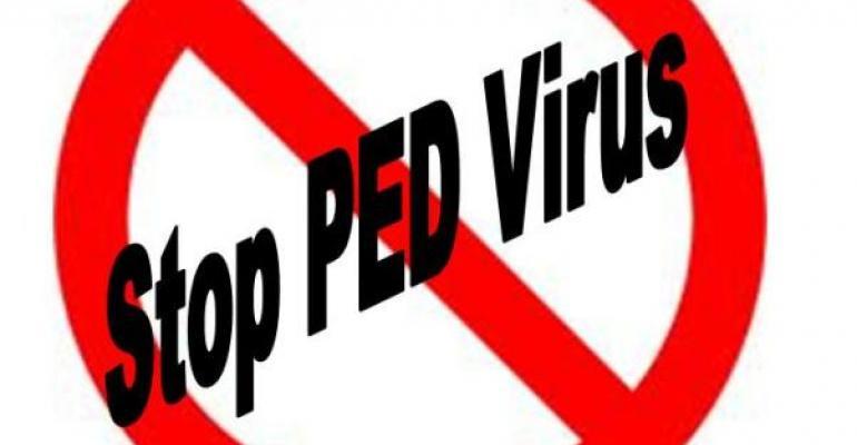 Iowa State Develops New PEDV Diagnostic Test