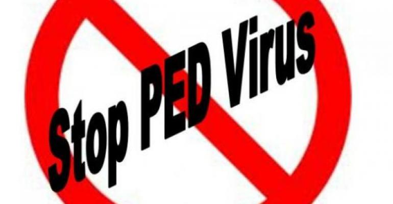 Pork Board Funds Eight PED Virus Projects