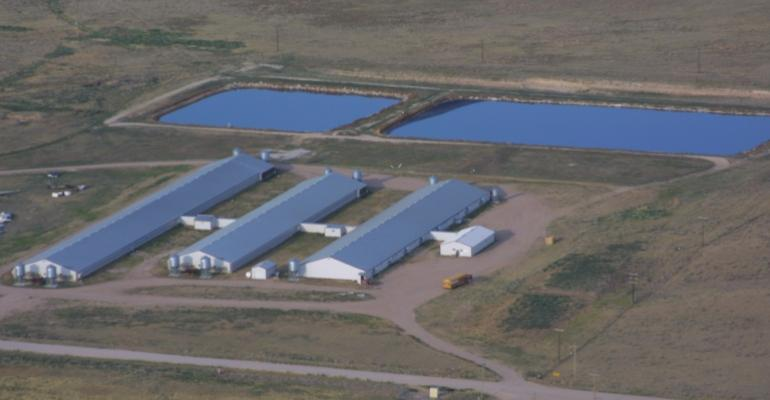 Net Farm Income to Rise 15% in 2013
