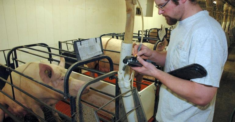 U.S. Pork Center of Excellence Offers Web-Based National Swine Reproduction Guide