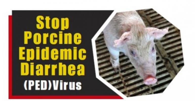 Three Million Pigs Possibly Lost Due to PEDV