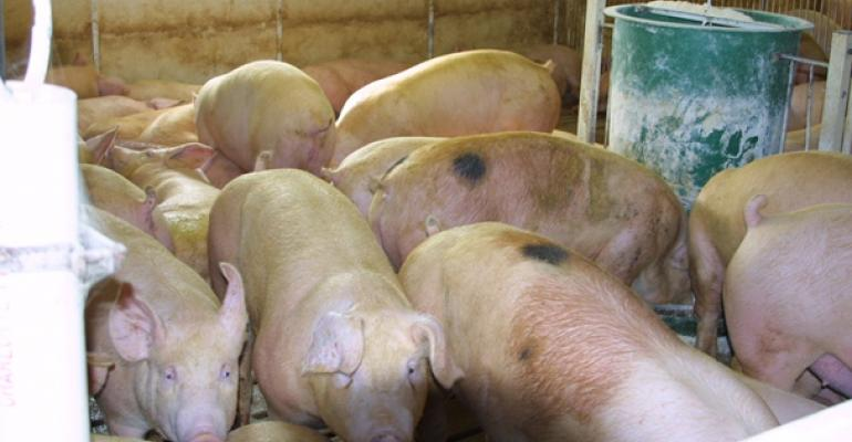 2014 Could be Best Year for Pork in a Decade