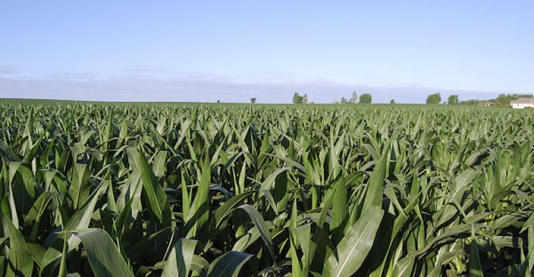 Corn condition continues to improve and soybeans look better too as the 2014 season progresses