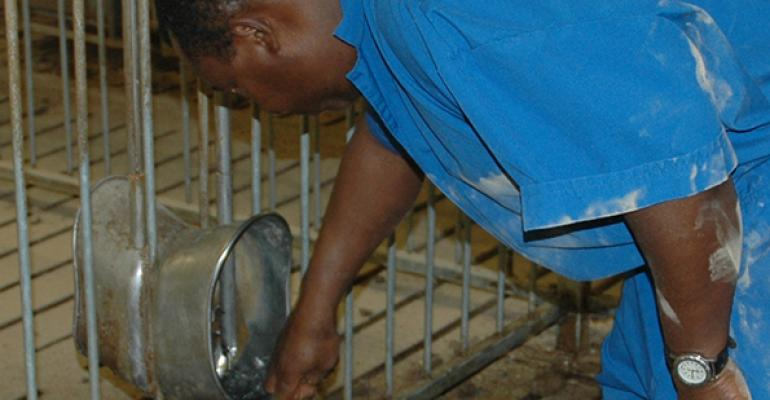 Water conservation adds up in swine operations