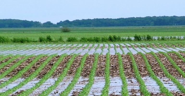 WOTUS rule halted for now in 13 states