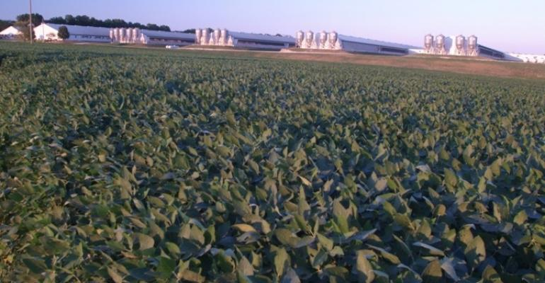 Weaker farm profits expected in 2015