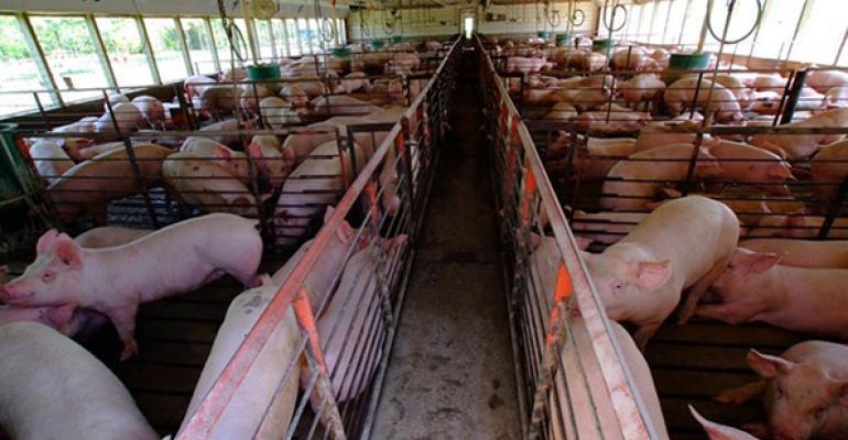 Nebraska lawmakers approve meatpackers' pigs ownership