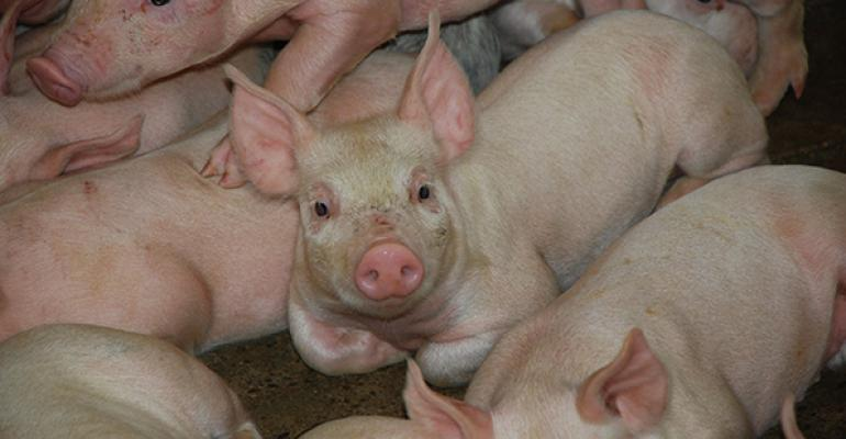 What is the potential for your farm to get to 30+ pigs?