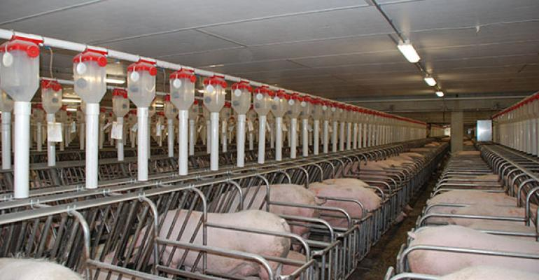 What factors are driving pork production expansion?