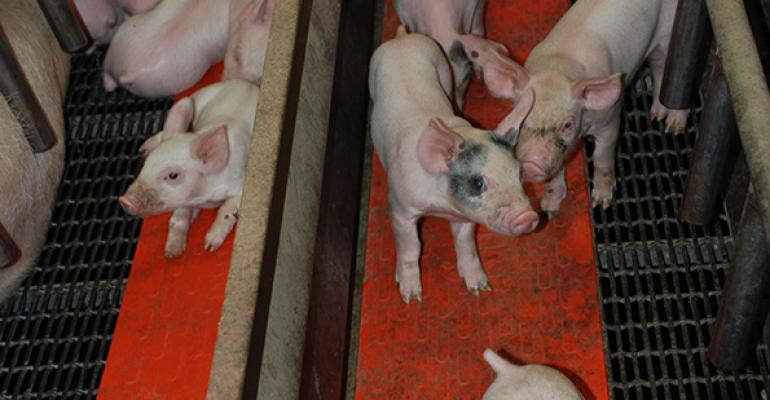 Pork production poised to challenge demand