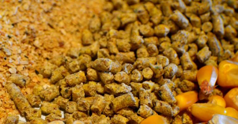 Pelleting and extrusion increase digestible and metabolizable energy in diets for pigs