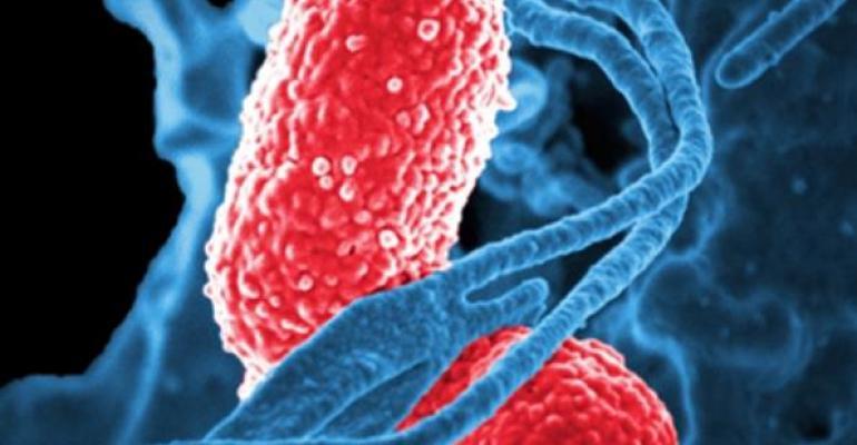CRE multidrugresistant bacteria