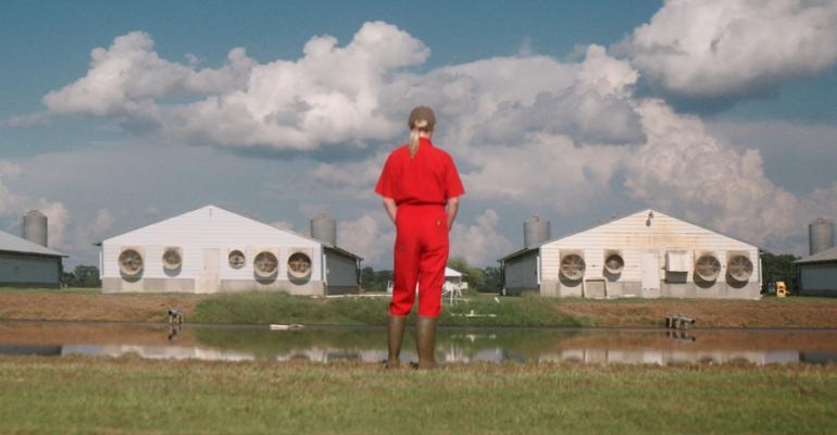 usfra climate pig film.jpg