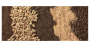 1540_800_Improving Pelleted Feed Quality.png