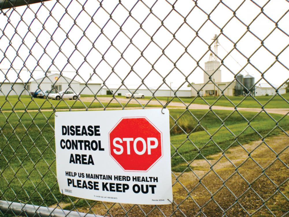 Exploring the Science Behind Biosecurity and PRRS