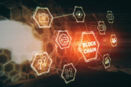 Block Chain Food Safety