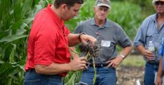 agronomist Mark Licht